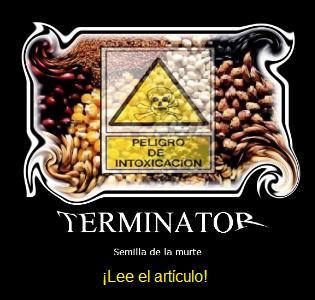 semilla terminator